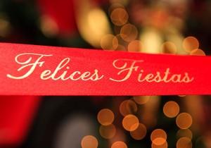 El OVCS les desea felices fiestas y un 2012 lleno de Paz